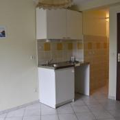 location Appartement 1 pièce Allevard
