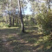 Terrain 750 m² Sainte-Anastasie-sur-Issole (83136)