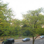 Düsseldorf, Appartement 2 pièces,