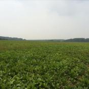Terrain 850 m² Évricourt (60310)