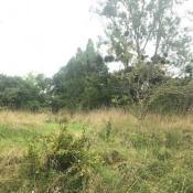 Terrain 364 m² Libourne (33500)
