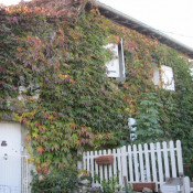 vente Maison / Villa 5 pièces St Felix Lauragais