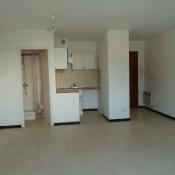 location Appartement 1 pièce Palavas les Flots