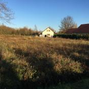 Terrain 1313 m² Louhans Chateaurenaud (71500)