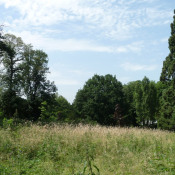Terrain 761 m² Morainvilliers (78630)