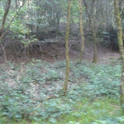 Vente terrain Plumelec 9000€ - Photo 4