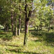 Terrain 686 m² Sainte-Anastasie-sur-Issole (83136)