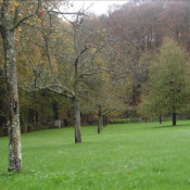Vente terrain Daubeuf serville 54600€ - Photo 8