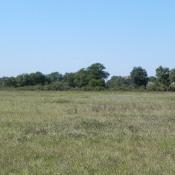 Terrain 1500 m² Latrille (40800)