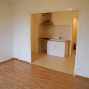 location Appartement 1 pièce Vénissieux