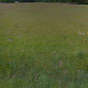 Terrain 2791 m² Lagorce (33230)