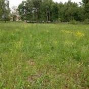 Terrain 600 m² Lacanau (33680)