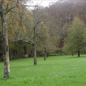 Vente terrain Daubeuf serville 54600€ - Photo 6