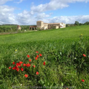 Castelnaudary, Chateau 20 rooms, 1330 m2