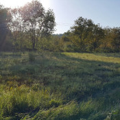 Terrain 1300 m² Monein (64360)