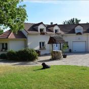 Vente maison / villa Crecy la chapelle 435000€ - Photo 1