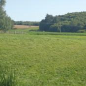 Terrain 1430 m² Saint-Martin-Terressus (87400)