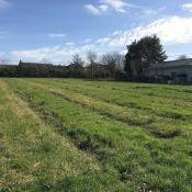 Terrain 1300 m² Paillet (33550)