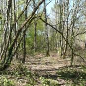 Vente terrain La croix hellean 3600€ - Photo 4