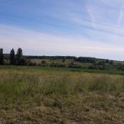 Terrain 993 m² Saint-Quentin-de-Caplong (33220)