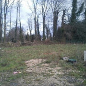 Terrain 326 m² Gremonville (76970)