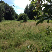 Terrain 440 m² Dinsheim sur Bruche (67190)