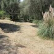 Terrain 2200 m² Contes (06390)