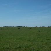 Terrain 1000 m² Haudricourt (76390)