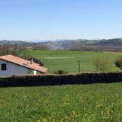 Terrain 2647 m² Guiche (64520)