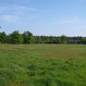 Terrain 1450 m² Laruscade (33620)