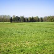 Terrain 600 m² Ballancourt-sur-Essonne (91610)
