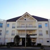 Location appartement La chapelle st mesmin 420€ CC - Photo 1