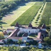Nérac, Schloss 16 Zimmer, 1000 m2