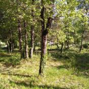 Terrain 468 m² Brignoles (83170)