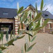 Challain la Potherie, Villa 7 pièces, 400 m2