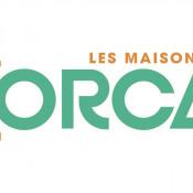 Terrain 655 m² Bray-sur-Seine (77480)