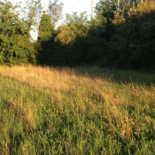 Terrain 1250 m² Rochefort du Gard (30650)