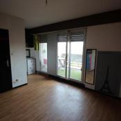 location Appartement 1 pièce Saverne