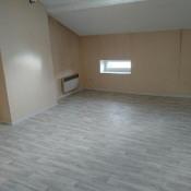 location Appartement 2 pièces Saint Symphorien-d'Ozon