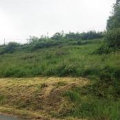 Terrain 1137 m² Saint-Didier-sur-Beaujeu (69430)