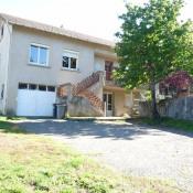 vente Maison / Villa 10 pièces Langeac