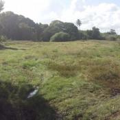 Vente terrain Ste Anne