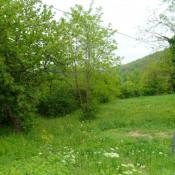 vente Terrain Saint-Pierre-de-Boeuf
