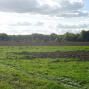 Terrain 410 m² Chantilly (60500)