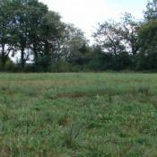 Terrain 585 m² Chaource (10210)