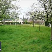 Vente terrain Limpiville 51600€ - Photo 1