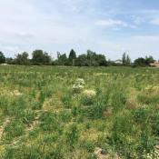 Terrain 500 m² Saint-Didier-sur-Chalaronne (01140)