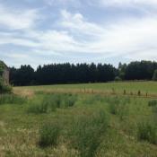 Terrain 1500 m² Albi (81000)