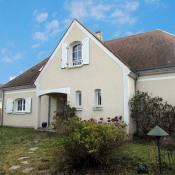 vente Maison / Villa 1 pièce Olivet