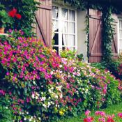 vente Maison / Villa 7 pièces Vendat